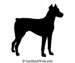 The black silhouette of a Doberman Pinscher