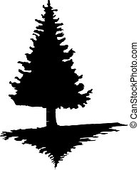 The black silhouette of a pine tree on an isolated background.