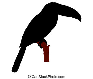 The black silhouette of a toucan sitting on a branch