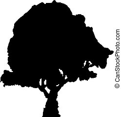 The black silhouette of a tree on a white background