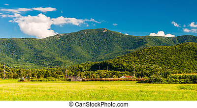 The Blue Ridge Mountains, seen from the Shenandoah Valley, Virginia.