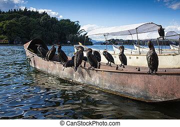the boat on a beautiful lake