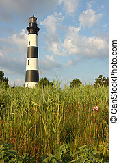 The Bodie Island lighthouse from the marshes vertical
