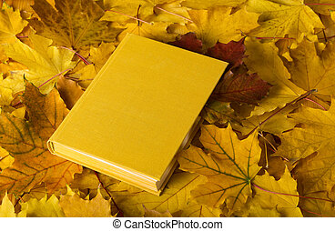 The book lies on the carpet of autumn leaves