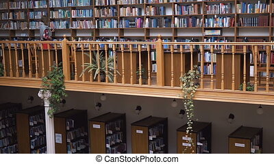 The Bookshelves Wall in Library