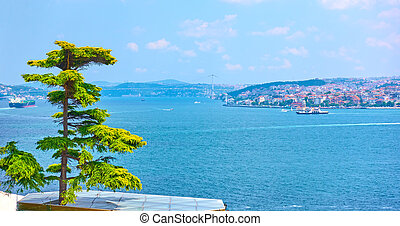 The Bosporus Strait in Istanbul - The Bosporus Strait and...