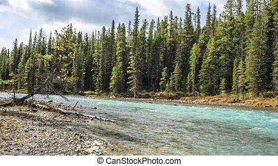 The Bow river along Icefield road. Bow lake outlet. Flow of clear turquoise water