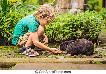 The boy feeds the rabbit. Cosmetics test on rabbit animal. Cruelty free and stop animal abuse concept