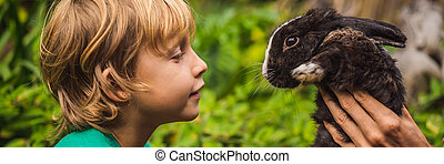 The boy feeds the rabbit. Cosmetics test on rabbit animal. Cruelty free and stop animal abuse concept BANNER, LONG FORMAT