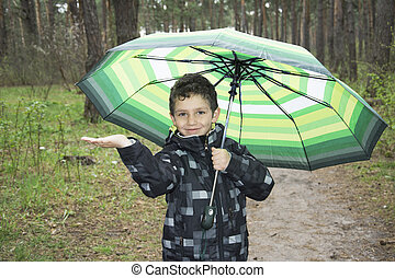 The boy in the forest standing under an umbrella.