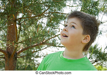 The boy in the woods. Looks up in surprise