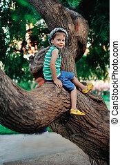 the boy on a tree