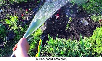 the boy pours water on plants - abundant watering plants on...