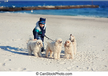 The boy with dogs
