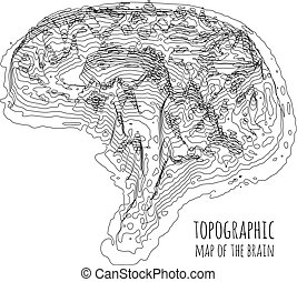 The brain in the form of a topographic map. The concept of modern technology, data transfer between neurons.