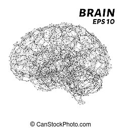 The brain is composed of points, lines and triangles. The polygon shape in the form of artificial intelligence on a dark background. Vector illustration. Graphic concept of the brain