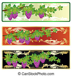 The branch of grapes