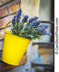 The branches of a young lavender in a yellow bucket.