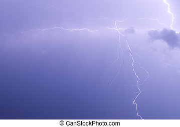 The branches of lightning