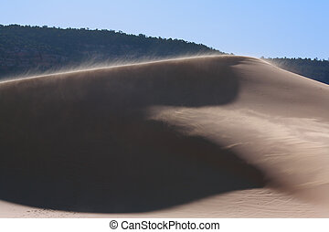 The breeze in reserve Coral sand dunes