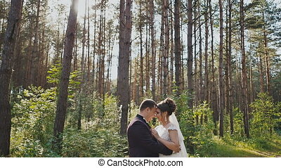 The bride and groom tenderly embrace each other among the pines in the forest. The sun. Wedding day. Moments of happiness and love.