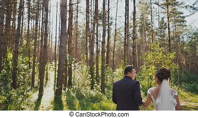 The bride and groom walk in a pine forest, holding hands and looking at each other in the sun. Happy together. Wedding day.
