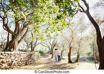 The bride and stand holding hands near the old stone wall among the trees in an olive grove, back view