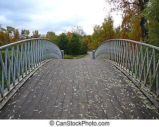 The bridge - bridge in the park