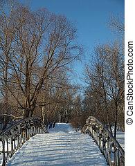 The bridge in park.
