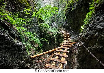 The bridge over the canyon. The Tatras. Slovakia.