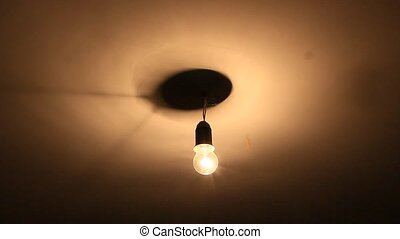 The bug flies around the electric lamp glowing under ceiling