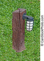 The Bulb on stump with green grass background