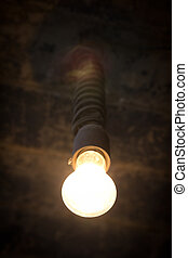 The bulb shines in the dark