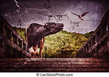 The bull bellows on the bridge.
