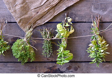 The bunches of herbs