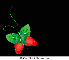 The butterfly from a strawberry, green leaflets with white ...