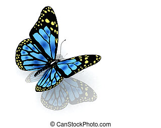 The butterfly of blue color - The butterfly of blue color