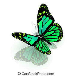The butterfly of green color - The butterfly of green color...