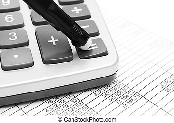 The calculator, documents and pen.