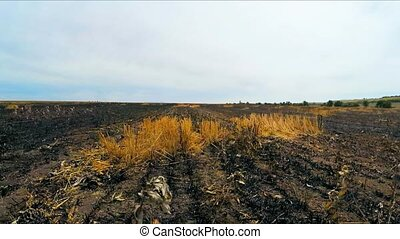 The camera moves on the burnt field