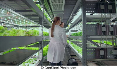 The camera moves through the corridors of a modern metal farm for growing vegetables and herbs, a team of scientists using computers and modern technology controls the growth and health of the crop.