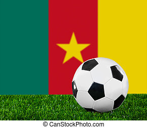 The Cameroonian flag and soccer ball on the green grass.
