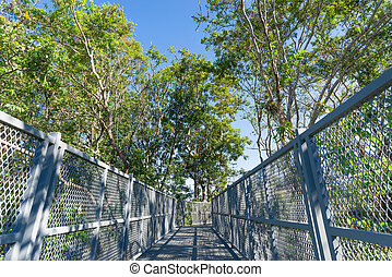 The Canopy Walkway at Queen Sirikit Botanic garden, a popular new attraction that height the 200m elevated walkway