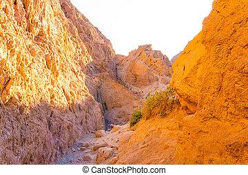 The Canyon at Dahab, Sinai at Egypt - The canyon at bedouin ...