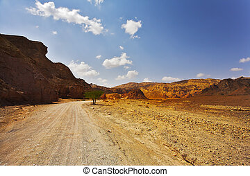 The canyon in mountains on Red sea
