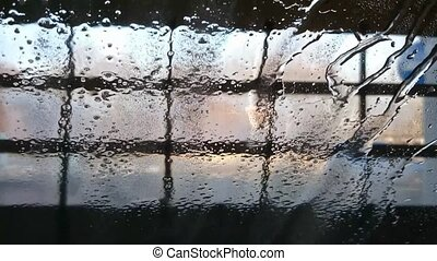 The car in the car wash