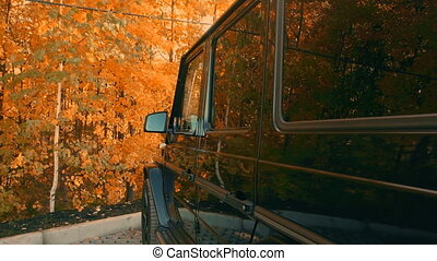 the car in the Parking lot of the forest in autumn