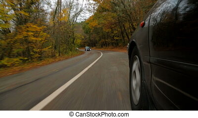 The car is driving along the road in the forest to meet her ...
