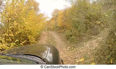 The car is riding in the autumn forest - The car goes on a...