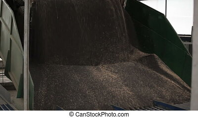 The Car Unloads Grain Rape in a Factory for The Production...